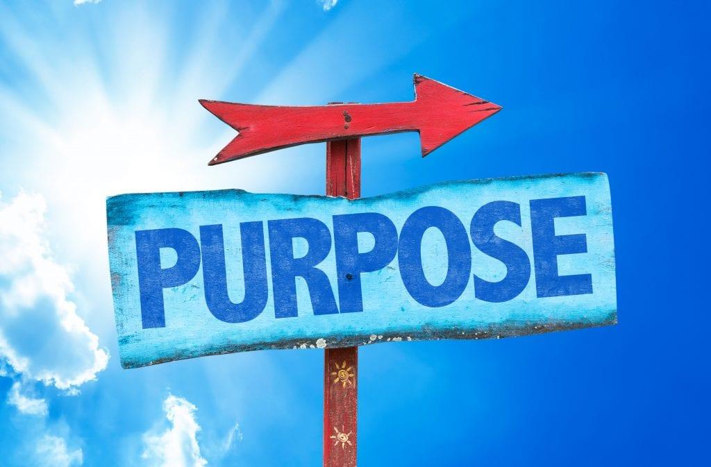 Purpose riktning